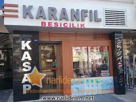 Karanfil Besicilik