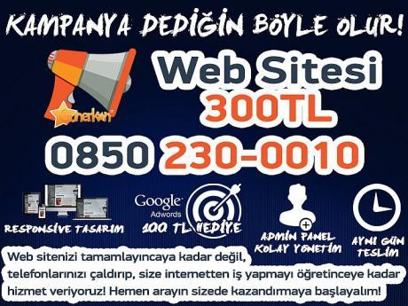 Web Tasarım 300 TL
